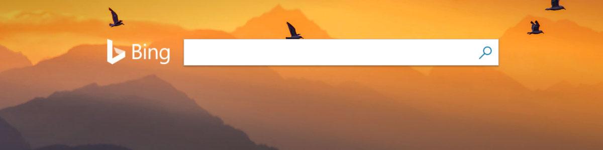 SEO for Bing: Organic Search Beyond Google